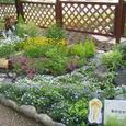 夢の庭づくりコンテスト